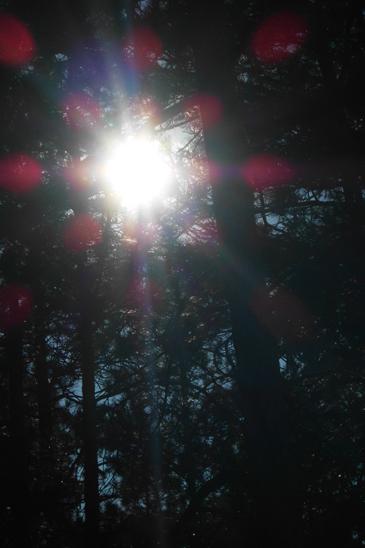 Sun Day1