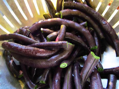 Burgandybeans1